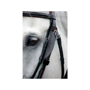 Dy'on Leather Blinkers