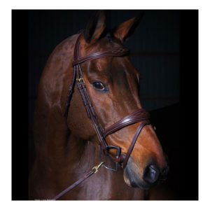 Dy'on Collection Bridle With Anatomic Noseband