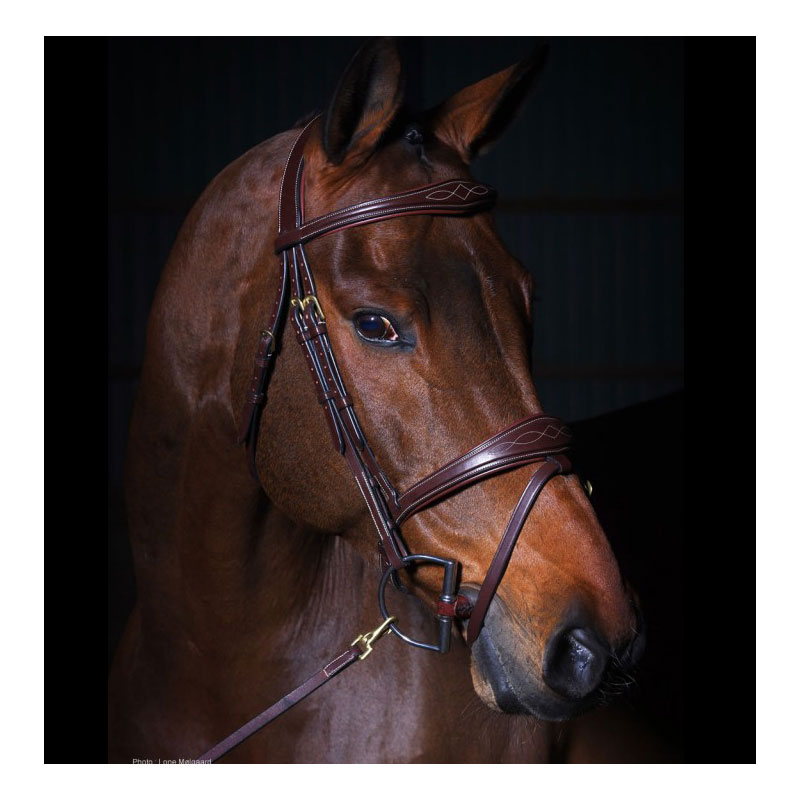 Dyon Collection Bridle With Anatomic Noseband Brown