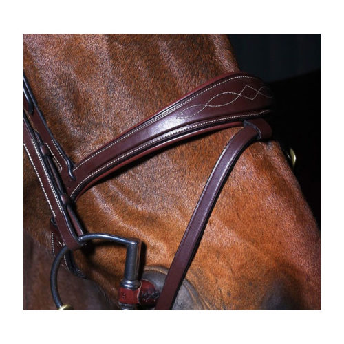 Dyon Collection Anatomic Noseband