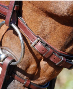 Dy'on New English Collection Flash Noseband Bridle