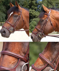 Dy'on Double Noseband Bridle New English Collection