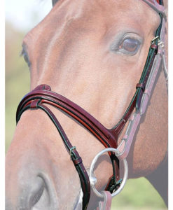 Dy'on New English Collection Removable Flash Noseband