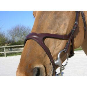 Dy'on New English Collection X Fit Anatomic Bridle