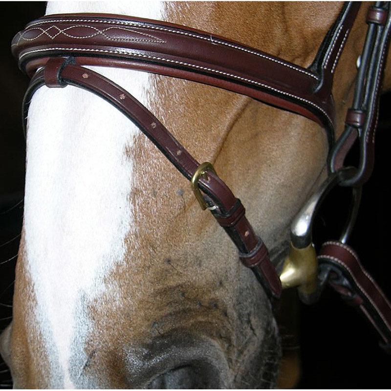 Dyon Collection Flash Nose Band Bridle 4