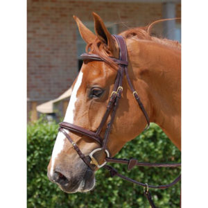 Dy'on Collection Flash Noseband Bridle