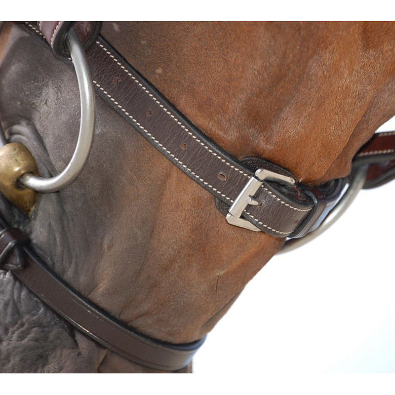 Dy'on Working Collection Classic Flash Noseband Bridle 2