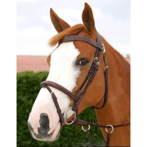 Dy'on Working Collection Fancy Flash Bridle