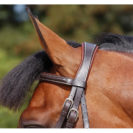 Dy'on Working Collection Classic Flash Noseband Bridle