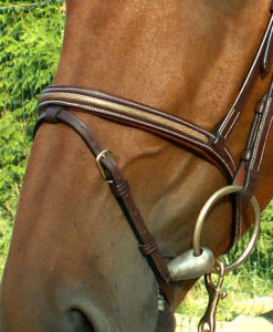 """Dy'on Collection """"Snake"""" Flash Noseband Bridle"""