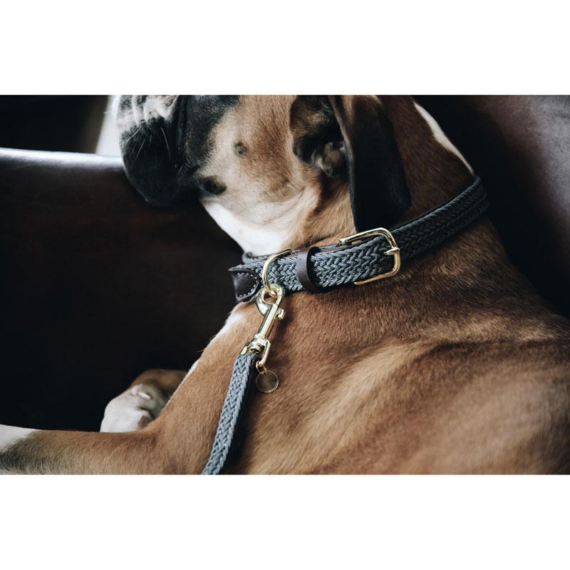 Kentucky Dogwear Dog Collar Grey