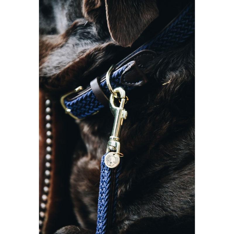 Kentucky Dogwear Dog Collar Navy