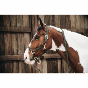 Kentucky Horsewear Plaited Nylon Head Collar