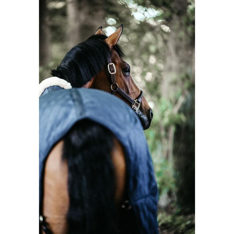Kentucky Horsewear Lightweight Stable Rug 7