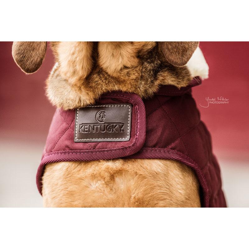Kentucky Dogwear Bordeaux Dog Coats 1
