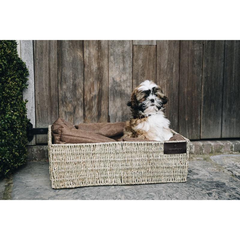 Kentucky Dogwear Dog Basket 1