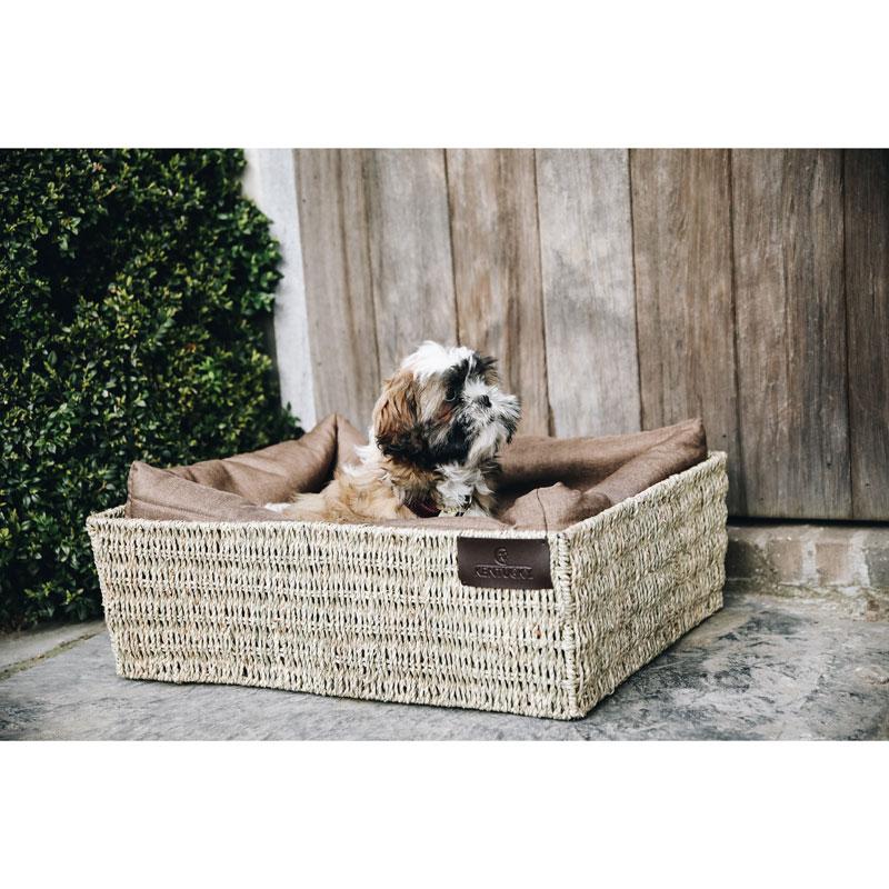 Kentucky Dogwear Dog Basket 2