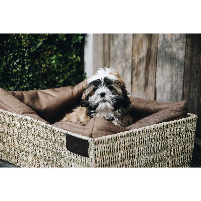 Kentucky Dogwear Dog Basket 3