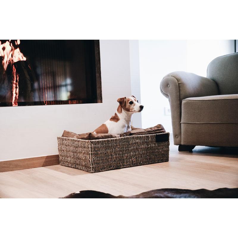 Kentucky Dogwear Dog Basket 5