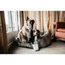 Kentucky Dogwear Dog Cave Bed 1