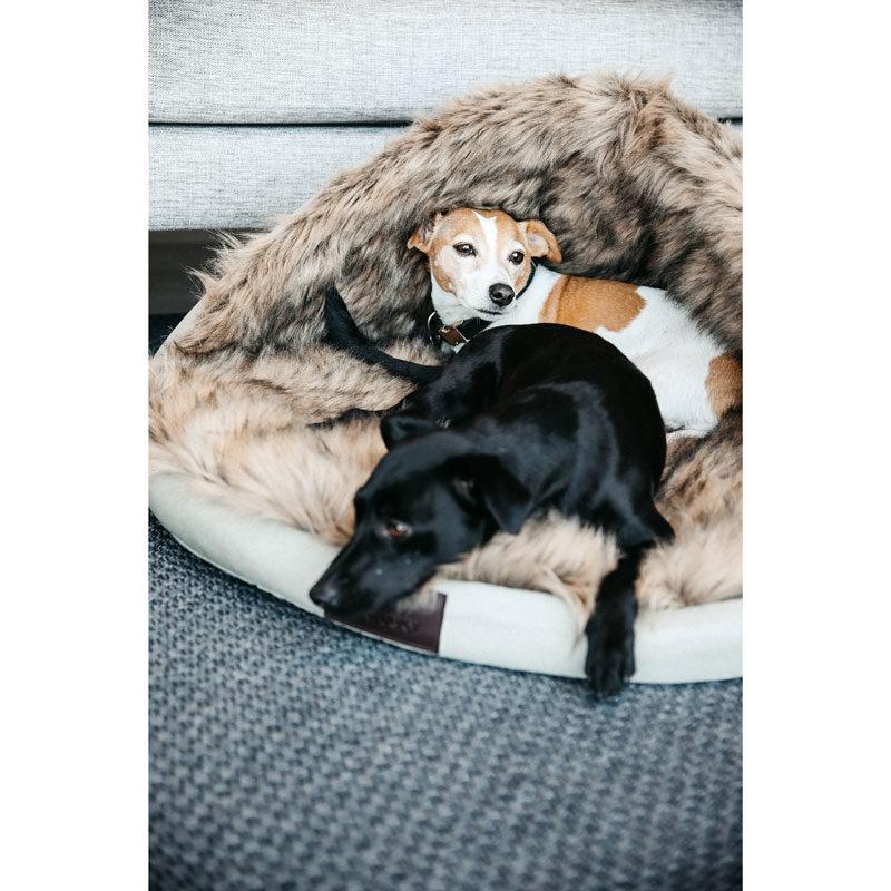 Kentucky Dogwear Igloo Dog Bed 2