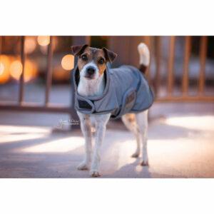 Kentucky Dogwear Reflective Dog Coat