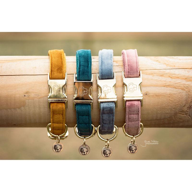 Kentucky Dogwear Velvet Dog Collars 1