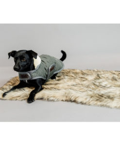 Kentucky Dogwear Fuzzy Blanket