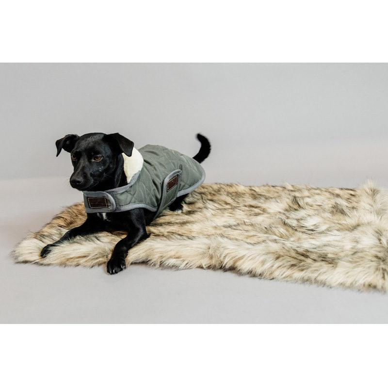 kentucky-dogwear-fuzzy-blanket-4