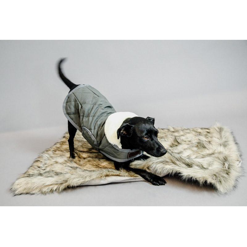 kentucky-dogwear-fuzzy-blanket-3
