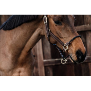 Kentucky Horsewear Rope Halter