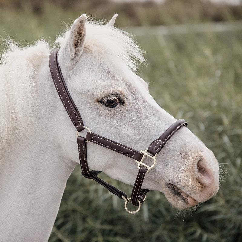 Kentucky Horsewear LeatherHalterSheepskinShetty/Pony
