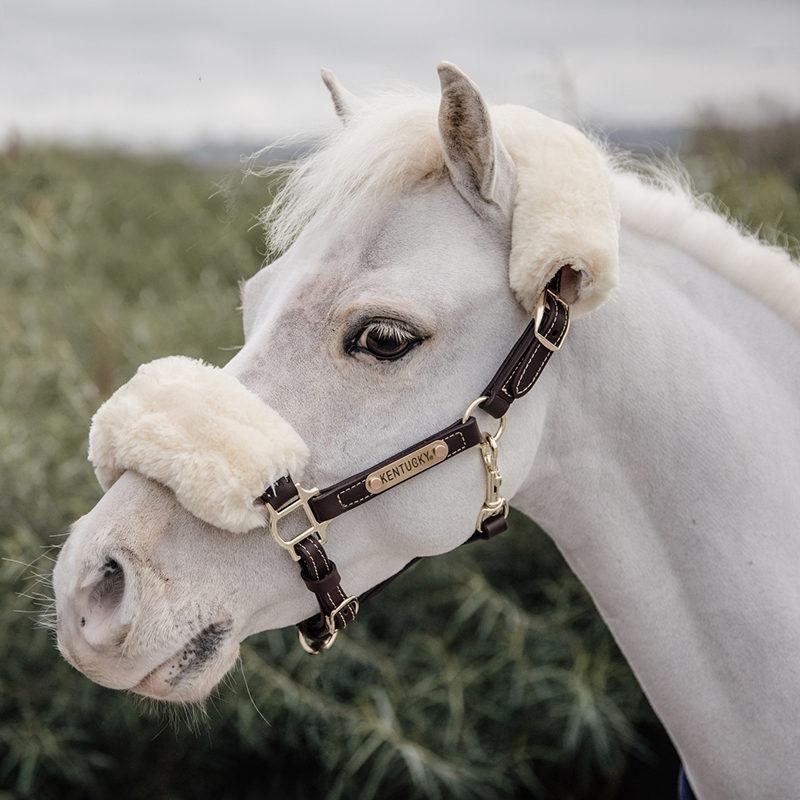 Kentucky Leather Sheepskin Pony Halter4