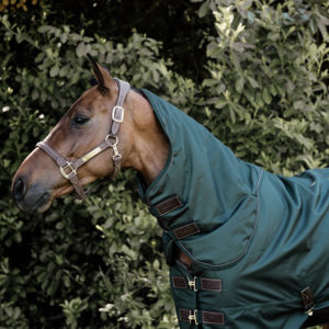 Kentucky Horsewear Turnout Rug All Weather Pro -160g