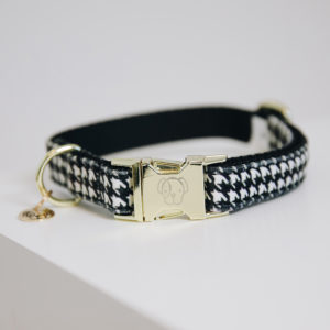 Kentucky Dogwear Collar Pied-de-Poule