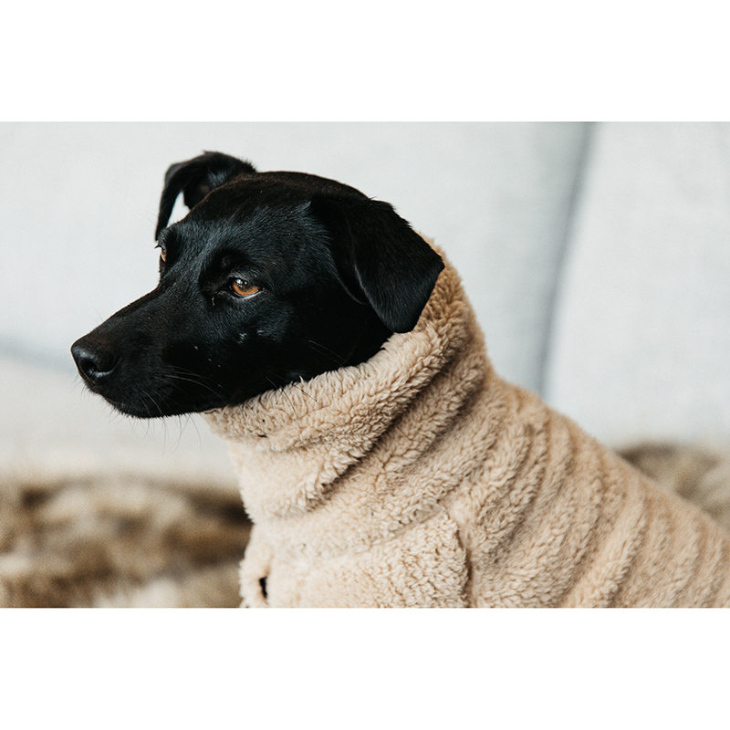 Kentucky Dogwear Teddy Fleece2