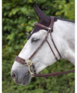 Dy'on New English Hackamore Bridle