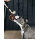 Kentucky Dogwear Dog Toy Cotton Rope Baseball