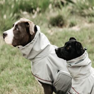 Kentucky Dogwear Dog Rain Coat