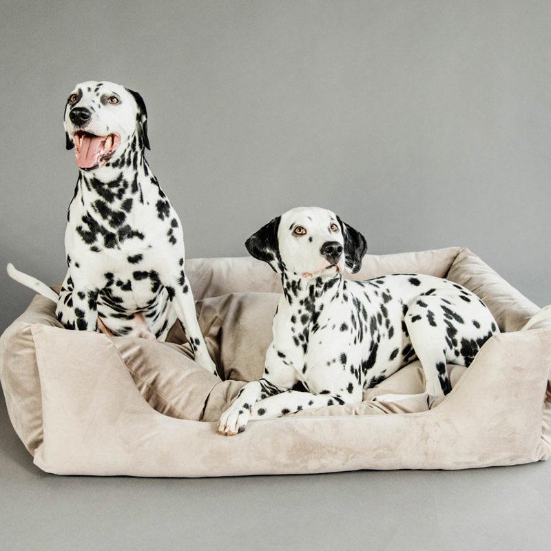Kentucky Dogwear Velvet Dog Bed 4