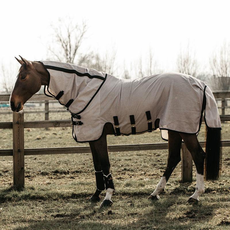 Kentucky Horsewear Mesh Fly Horse Rug 1