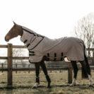 Kentucky Horsewear Mesh Fly Horse Rug