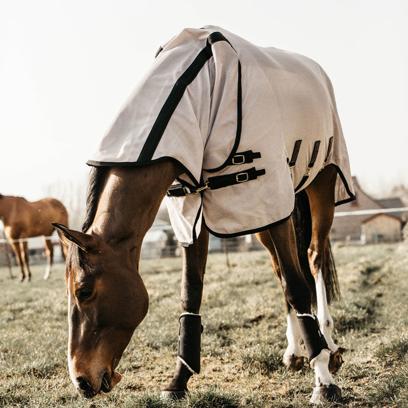 Kentucky Horsewear Mesh Fly Horse Rug 2