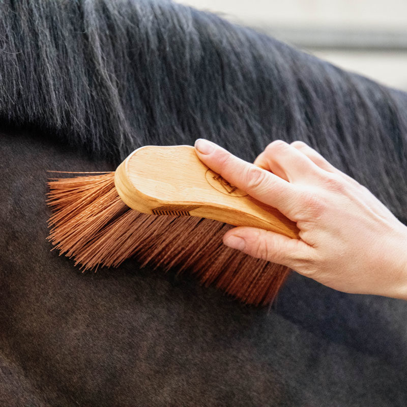 Grooming Deluxe Middle Brush Medium