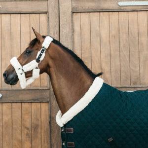 Kentucky Horsewear Show Rug - Pine Green