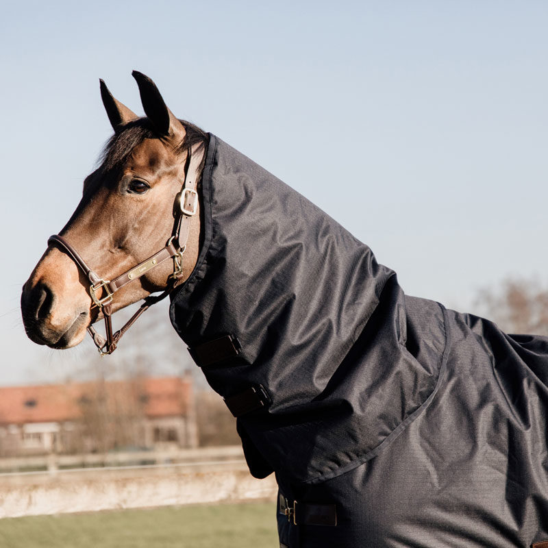 Turnout Rug All Weather Waterproof Classic 6
