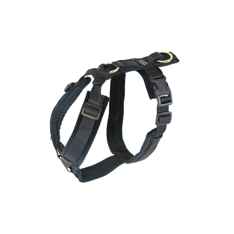 Active Dog Harness Velvet Black