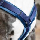 Active Dog Harness Velvet Navy 3