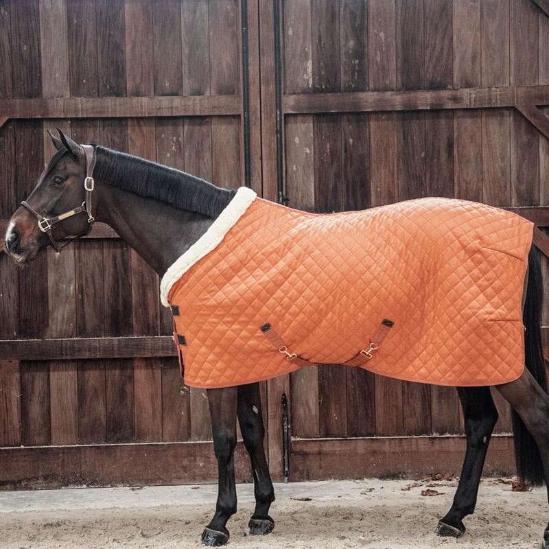 Kentucky Horsewear Show Rug - Orange 4