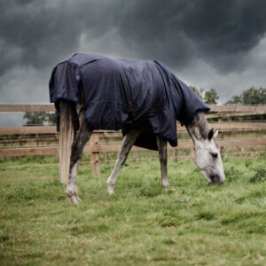Turnout Rug All Weather Hurricane 2